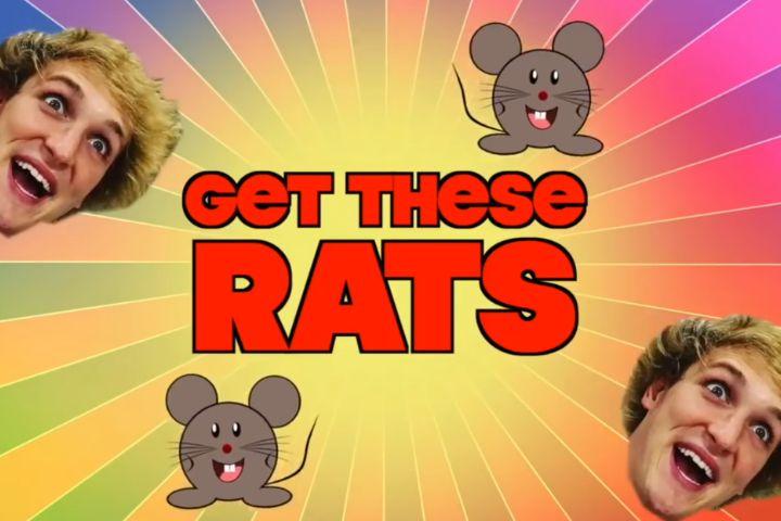 Logan Paul fait de nouveau polémique en tasant des rats