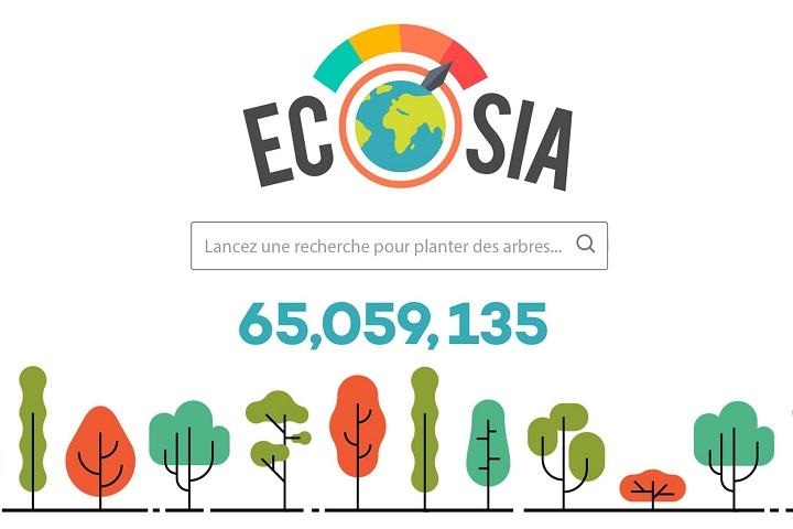Ecosia plante toujours plus d'arbres !