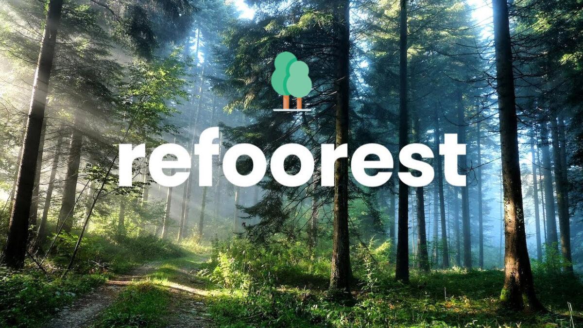 Refoorest : l'extension de navigateur qui permet de planter des arbres gratuitement