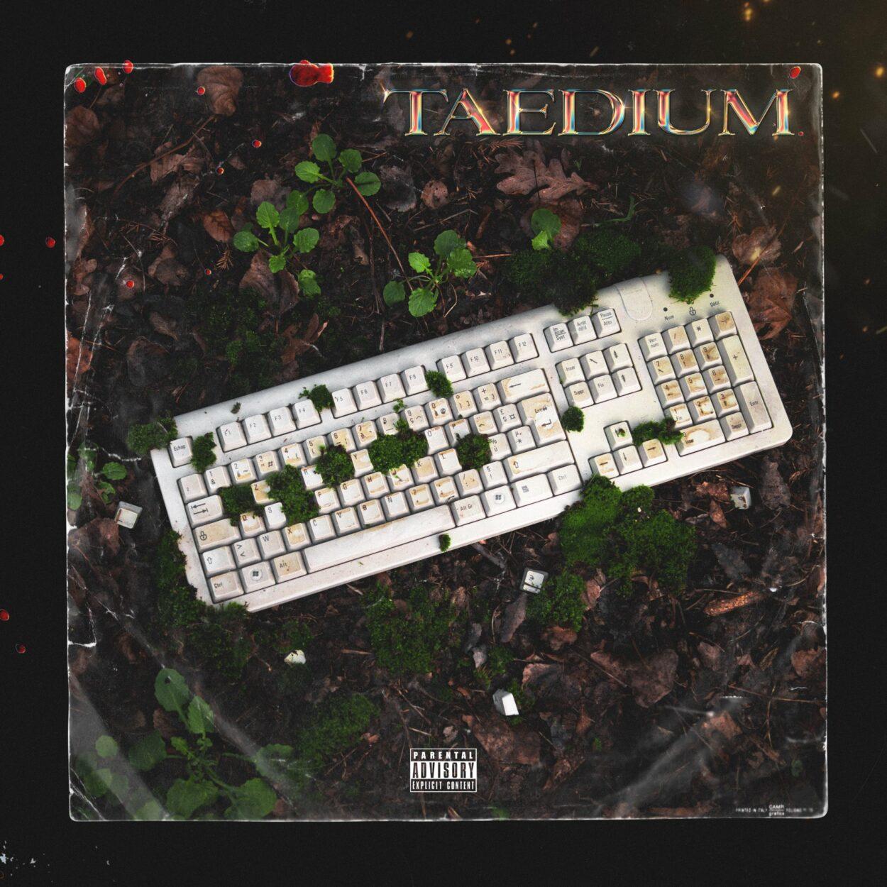 taedium