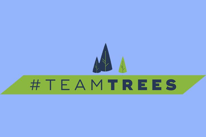 #TeamTrees : quand Internet se mobilise pour planter des arbres
